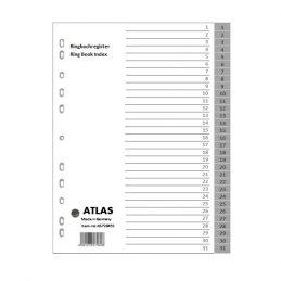 Divider-Atlas-plastic-1-31
